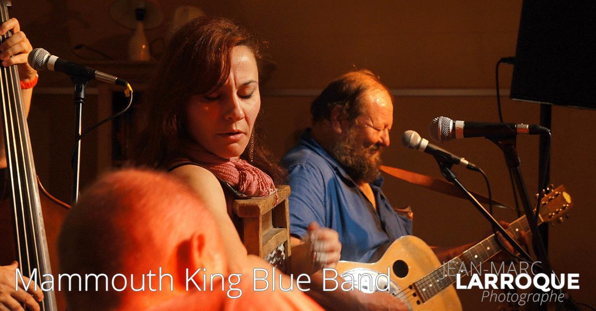 Concert Mammouth King Blues Band - La Maison de la Terre