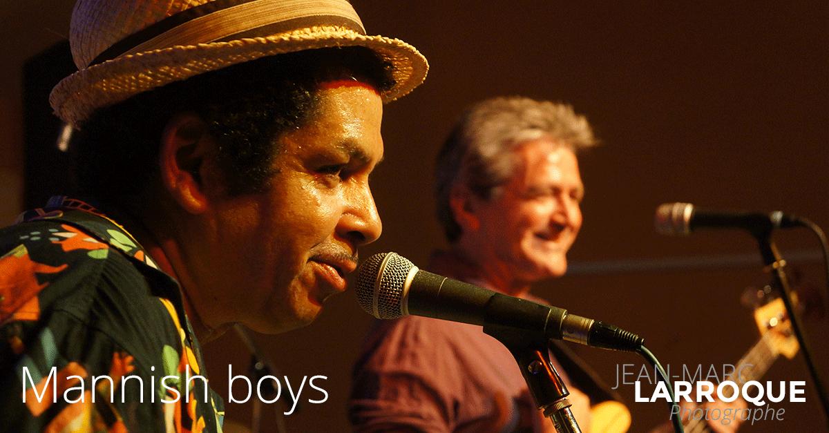 Concert Mannish boys - La Maison de la Terre